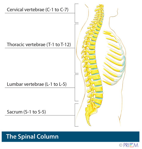 minimally invasive spine surgery san jose